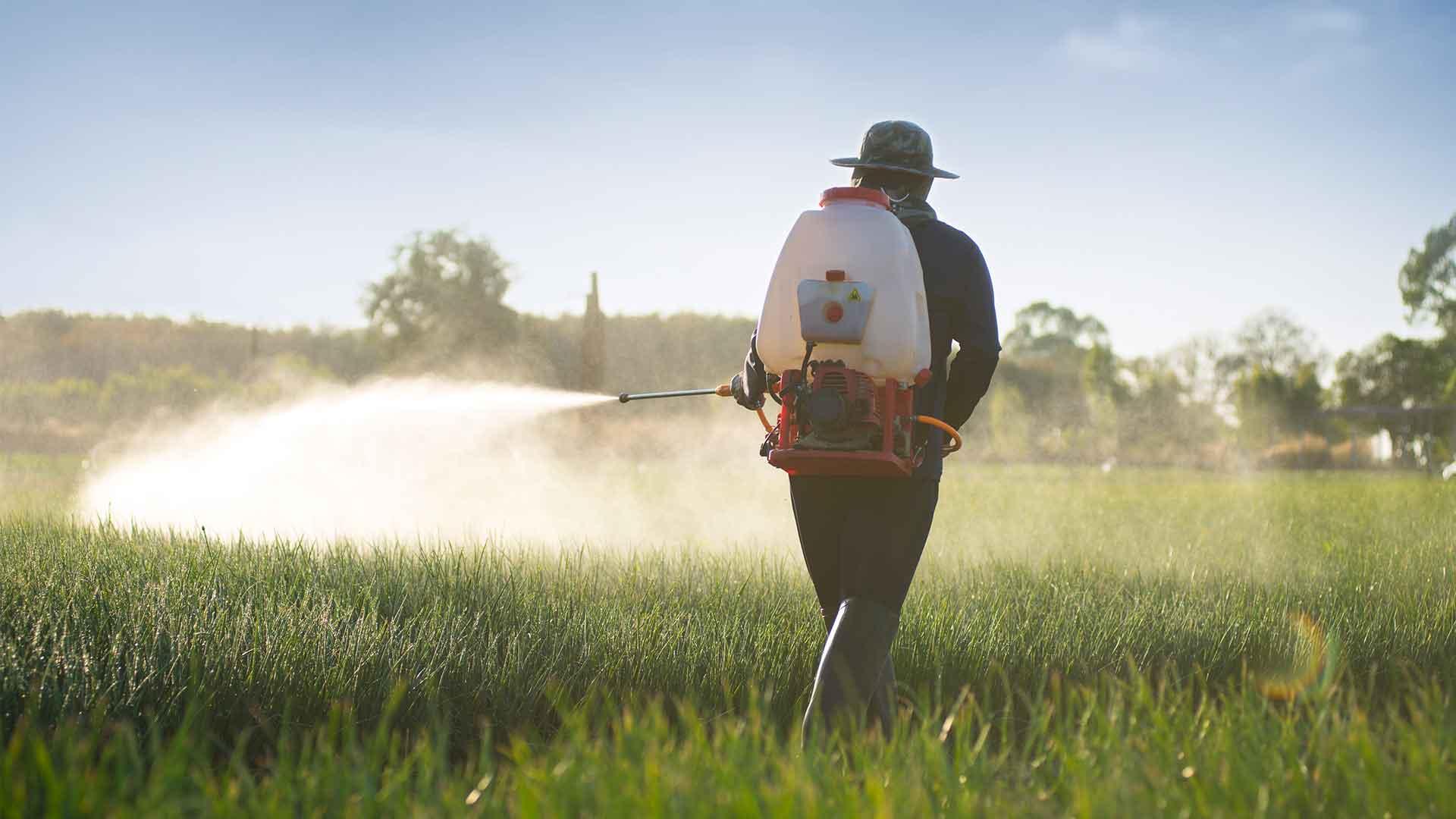 Boron in Fertilizers